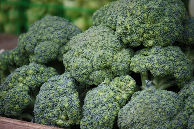 King of the Cruciferous: Broccoli